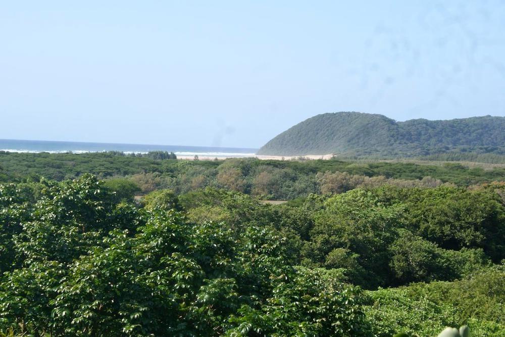 Ndiza Lodge St Lucia