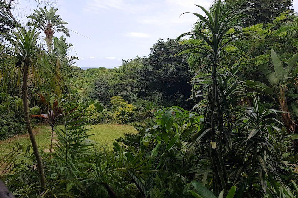 Ndiza Garden